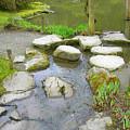 Stone Garden by Maro Kentros