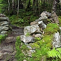 Stone Gate - Edmands Path - White Mountains New Hampshire  by Erin Paul Donovan