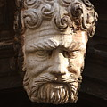 Stone Head In Venice by Michael Henderson