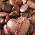 Stone Heart by Garry Gay