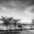 Stone Hut Set In Grassland Plains by David DuChemin