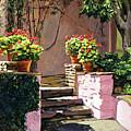 Stone Patio California by David Lloyd Glover