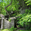 Stone Stairway Along The Wissahickon Creek by Bill Cannon