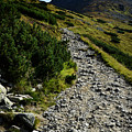 Stone Walkway Towards The Pointed Peak by Jozef Jankola