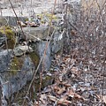 Stone Wall At Jackson Lock by Christopher Lotito