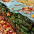 Stone Wall by Diana Hatcher