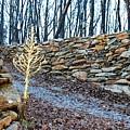 Stone Wall Ga Mountain 1 by Angela Murray