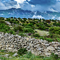 Stone Wall, Landscape And Low Clouds Of Rab, Crotia by Global Light Photography - Nicole Leffer