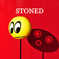 Stoned by David Lee Thompson
