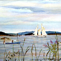 Stonington Harbor, Maine by Pamela Parsons