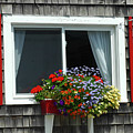 Stonington Window by Jerry Griffin