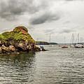 Stony Cove, Ireland by Ed James