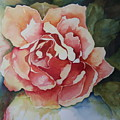 Stop And Smell The Roses by Donna Steward