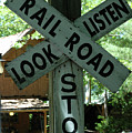 Stop, Look, Listen by Kathy Carlson