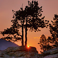 Stop Right Here - Rocky Mountain Np - Sunrise by Nikolyn McDonald