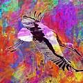 Stork Fly Elegant Feather Bird  by PixBreak Art