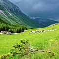 Storm Approaching Over Beautiful Green Field In Norway by Todor Nikolov