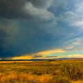 Storm  by Betty LaRue