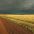 Storm Clouds Along A Saskatchewan Country Road by Mark Duffy