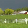 Storm Coming by Al Beard