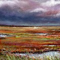 Storm Coming by Peter R Davidson