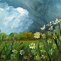 Storm Daisies by Linda L Martin