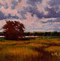 Storm Over Marshes by Keith Burgess