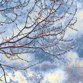 Storm Watch by Jim Thomas