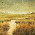 Stormy Marsh by Guy Crittenden