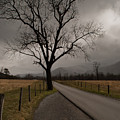 Stormy Roads by Donna Collins