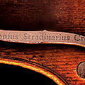 Stradivarius Label by Endre Balogh