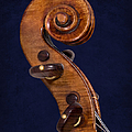 Stradivarius Scroll by Endre Balogh