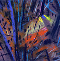 strange Lights by Donald Maier