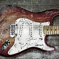 Strat Guitar Fantasy by Mal Bray