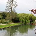 Stratford Upon Avon 1 by Douglas Barnett
