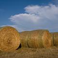Straw Bales On A Hog Farm In Kansas by Joel Sartore