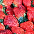 Strawberries 8 X 10 by Carol Groenen