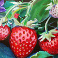 Strawberries by E Bradshaw
