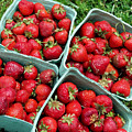 Strawberries In A Box On The Green Grass by Jeelan Clark