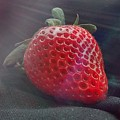 Strawberries Raise by Sylvester Wofford