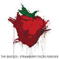 Strawberry Fields Forever  by Koichi Endo