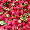 Strawberry by Onur KURT