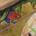 Strawberry Poison Dart Frog by Elizabeth Rieke Hefley