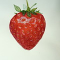 Strawberry  by Renate Schliesmann