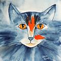 Stray Cat by Jutta Maria Pusl