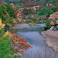 Stream And Fall Color In Central California by Dave Welling