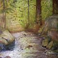 Stream by Arnildo Danga