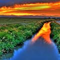 Stream Of Light by Scott Mahon