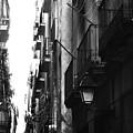 Street 5 by Roger Muntes