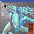 Street Art In Charleston by Dave Mills